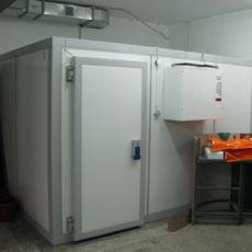 Холодильная камера для шоковой заморозки пельменей